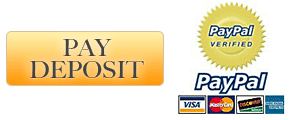 pay deposit with paypal